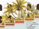 wiszące ogrody - budowa