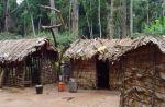 prymitywny dom