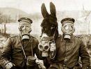 żołnierze i wierzchowiec w maskach przeciwgazowych