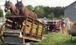 wykorzystanie siły koni