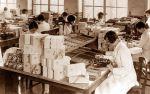 fabryka czekoladek